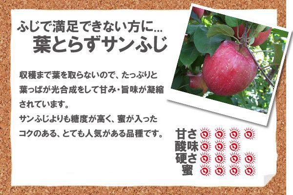 収穫まで葉を取らないので、たっぷりと葉っぱが光合成をして甘み・旨味が凝縮されています。サンふじよりも糖度が高く、蜜が入ったコクのある、とても人気がある品種です。