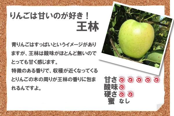 青りんごはすっぱいというイメージがありますが、王林は酸味がほとんど無いのでとっても甘く感じます。特徴のある香りで、収穫が近くなってくるとりんごの木の周りが王林の香りに包まれるんですよ。