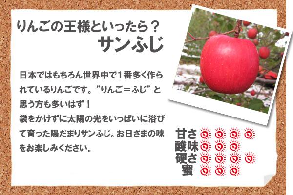 """りんごの王様と言ったら?サンふじ 日本ではもちろん世界中で1番多く作られているりんごです。 """"りんご=ふじ"""" と思う方も多いはず!袋をかけずに太陽の光をいっぱいに浴びて育った陽だまりサンふじ。お日さまの味をお楽しみください。"""