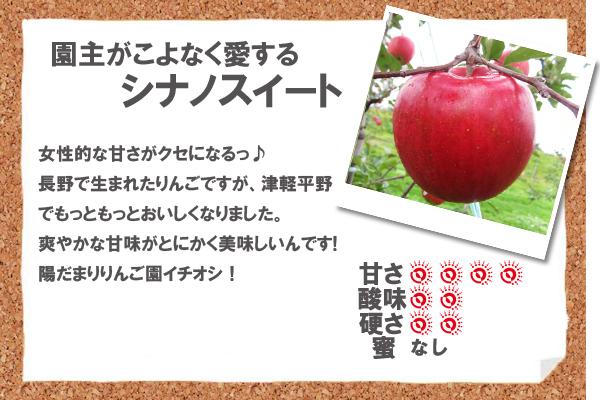園主がこよなく愛すシナノスイート 女性的な甘さがクセになるっ♪長野で生まれたりんごですが、津軽平野でもっともっとおいしくなりました。爽やかな甘味がとにかく美味しいんです!陽だまりりんご園イチオシ!