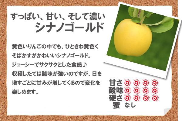 すっぱい、甘い、そして濃いシナノゴールド 黄色いりんごの中でも、ひときわ黄色くそばかすがかわいいシナノゴールド。ジューシーでサクサクとした食感♪収穫したては酸味が強いのですが、日を増すごとに甘みが増してくるので変化を楽しめます。